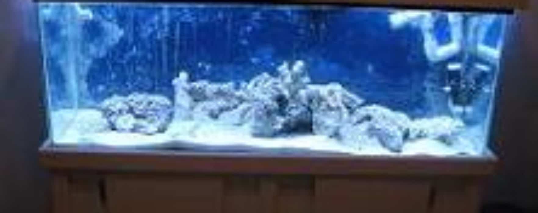 how to build a sump for saltwater tank